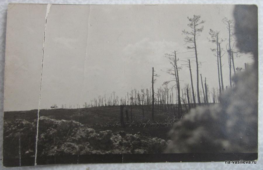 1917 Первая Мировая Война. Вид из окопа Архив Б. Беккера