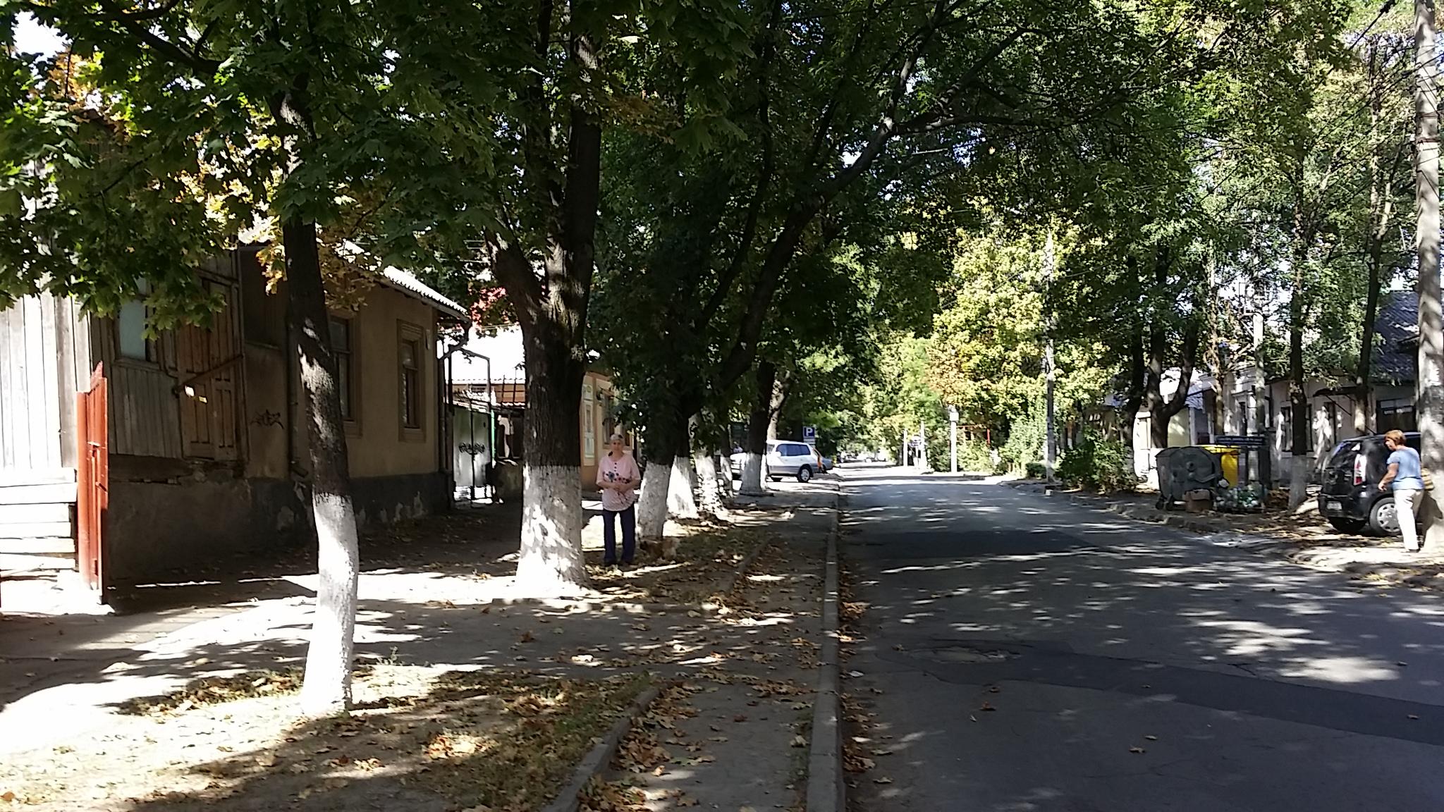 Реликт города Кишинева