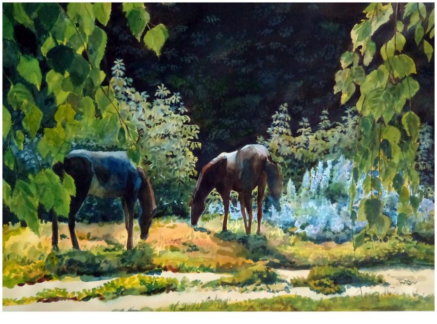 Выставка А. Сокольско 9